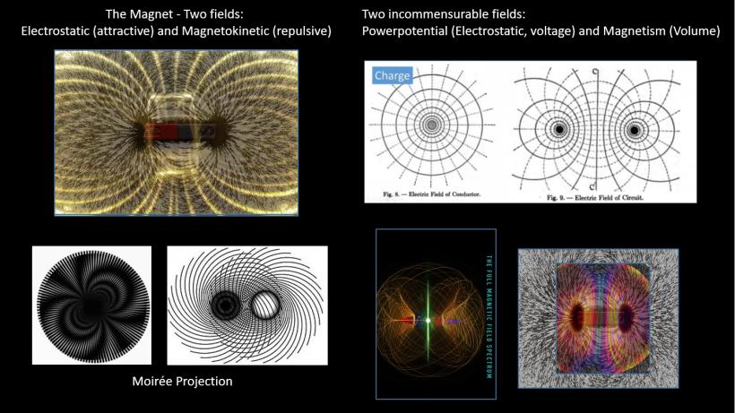 The Magnet - EM fields